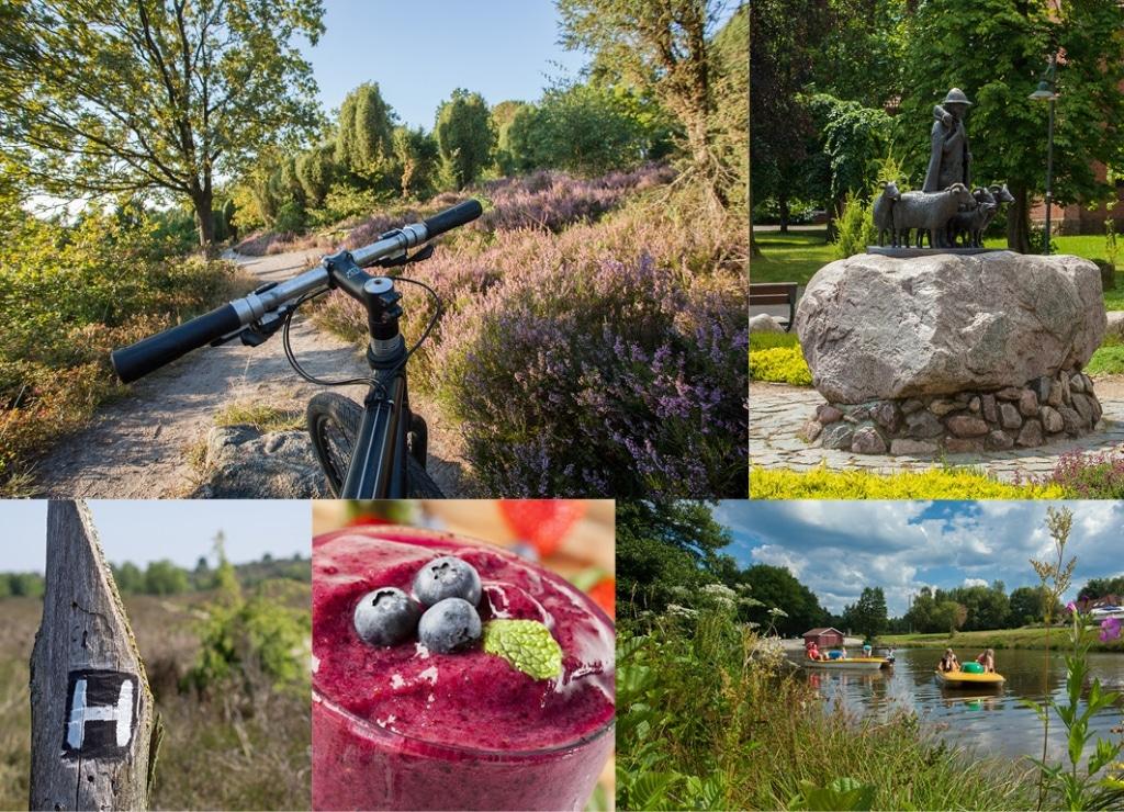 Impressionen Umgebung - Fotos: Bispingen Touristik | Pixabay | AdobeStock/Gundolf Renze